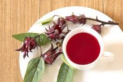 Τσάι Rosella Στοκ φωτογραφίες με δικαίωμα ελεύθερης χρήσης