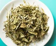 Τσάι Stevia Στοκ εικόνα με δικαίωμα ελεύθερης χρήσης