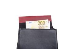 Τσάντα με τα ευρο- τραπεζογραμμάτια χρημάτων Στοκ Εικόνες