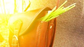 Τσάντα με τα χορτάρια Στοκ Φωτογραφίες
