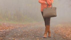 Τσάντα στα χέρια γυναικών Μόδα φθινοπώρου πτώσης Στοκ Εικόνες