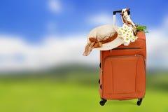 Τσάντα ταξιδιού με ένα καπέλο αχύρου και μια ανθοδέσμη των μαργαριτών Στοκ Εικόνες