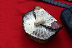 τσάντα του δέρματος φιδιών Στοκ φωτογραφία με δικαίωμα ελεύθερης χρήσης