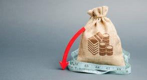 Τσάντα χρημάτων με το κόκκινο βέλος κάτω Η έννοια της μείωσης των κερδών Ασύμφορη επιχείρηση Κύρια εκροή Έκθεση και οικονομικός στοκ εικόνα με δικαίωμα ελεύθερης χρήσης