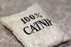 τσάντα 100 catnip Στοκ εικόνα με δικαίωμα ελεύθερης χρήσης