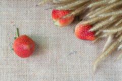 Τσάντες κάνναβης φραουλών Στοκ Εικόνες