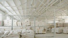 Τσάντες με το αλεύρι στην αποθήκη εμπορευμάτων του εργοστασίου αλευριού Απόθεμα αλευριού Αποθήκη εμπορευμάτων μύλων φιλμ μικρού μήκους