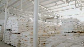 Τσάντες με το αλεύρι στην αποθήκη εμπορευμάτων του εργοστασίου αλευριού Απόθεμα αλευριού Αποθήκη εμπορευμάτων μύλων απόθεμα βίντεο