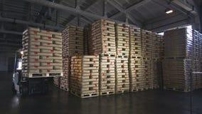 Τσάντες τα χημικά μίγματα που μεταφέρονται με από Forklift απόθεμα βίντεο