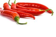 τσίλι πέντε κόκκινο πιπεριώ& Στοκ εικόνες με δικαίωμα ελεύθερης χρήσης