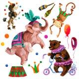 Τσίρκο Watercolor Στοκ Εικόνες
