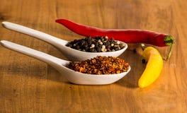 Τσίλι και πιπέρι στα κοχύλια Στοκ φωτογραφία με δικαίωμα ελεύθερης χρήσης