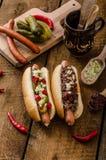 Τσίλι και χορτοφάγο χοτ-ντογκ Στοκ φωτογραφία με δικαίωμα ελεύθερης χρήσης