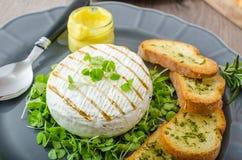 Τσίλι και χορτοφάγο χοτ-ντογκ Στοκ εικόνα με δικαίωμα ελεύθερης χρήσης