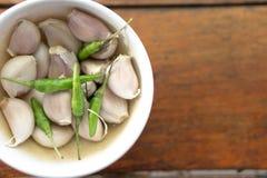 Τσίλι και garlics Στοκ εικόνα με δικαίωμα ελεύθερης χρήσης