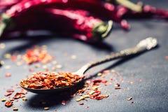 Τσίλι Πιπέρια τσίλι Διάφορα ξηρά πιπέρια τσίλι και συντριμμένα πιπέρια σε ένα παλαιό κουτάλι που ανατρέπεται γύρω συστατικά μεξικ Στοκ Φωτογραφίες