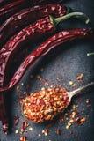 Τσίλι Πιπέρια τσίλι Διάφορα ξηρά πιπέρια τσίλι και συντριμμένα πιπέρια σε ένα παλαιό κουτάλι που ανατρέπεται γύρω συστατικά μεξικ Στοκ φωτογραφίες με δικαίωμα ελεύθερης χρήσης