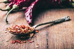 Τσίλι Πιπέρια τσίλι Διάφορα ξηρά πιπέρια τσίλι και συντριμμένα πιπέρια σε ένα παλαιό κουτάλι που ανατρέπεται γύρω συστατικά μεξικ Στοκ Εικόνες