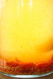 Τσίλι που παστώνονται κόκκινα στο ξίδι Στοκ Φωτογραφίες