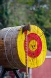 Τσεκούρι και ξύλινος στόχος κολοβωμάτων δέντρων Στοκ Φωτογραφίες