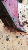 Τσεκούρι που ενσωματώνεται σε έναν φραγμό του ξύλου Στοκ Φωτογραφίες