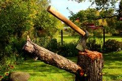 Τσεκούρι σε ένα κολόβωμα σε έναν κήπο στοκ εικόνες με δικαίωμα ελεύθερης χρήσης