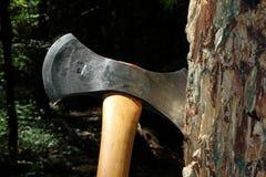 Τσεκούρι στο ξύλο Στοκ Εικόνες