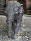 ΤΣΕΣΤΕΡ, CHESHIRE/UK - 10 ΟΚΤΩΒΡΊΟΥ: Γλυπτό ελεφάντων Janya μέσα Στοκ Εικόνα