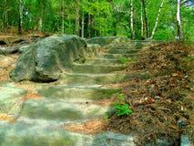 Τσεχικά βήματα middleage βαθιά στα δάση στοκ εικόνα με δικαίωμα ελεύθερης χρήσης