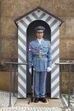 Τσεχική φρουρά Στοκ Εικόνες