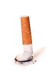 τσιγάρο άκρης στοκ εικόνα