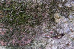 Τσιμέντο σύστασης και τούβλα του αρχαίου τοίχου και με τη σκουριά στοκ φωτογραφίες