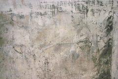 τσιμεντένια πλάκα Στοκ Εικόνες