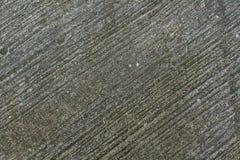 Τσιμεντένιο πάτωμα, πάτωμα τσιμέντου, πάτωμα σύστασης, πάτωμα σχεδίων, πράσινη λειχήνα στο πάτωμα Στοκ Εικόνες