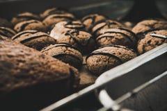 Τσιπ σοκολάτας/μπισκότο με το σκοτεινό χρώμα στοκ φωτογραφία με δικαίωμα ελεύθερης χρήσης