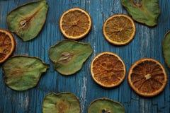 Τσιπ φρούτων στοκ εικόνα