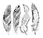 Τυποποιημένα διανυσματικά φτερά Στοκ Φωτογραφία