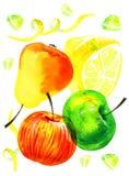Τυποποιημένη συρμένη χέρι απεικόνιση watercolor με την επιβολή των μήλων, των λεμονιών και των αχλαδιών Στοκ Φωτογραφία