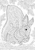 Τυποποιημένος σκίουρος Zentangle Στοκ Εικόνες