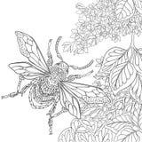Τυποποιημένο έντομο κανθάρων Zentangle διανυσματική απεικόνιση