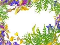 Τυποποιημένο floral άνευ ραφής σχέδιο πλαισίων - ανθοδέσμη για την πρόσκληση Στοκ Φωτογραφίες