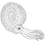 Τυποποιημένο nautilus Zentangle απεικόνιση αποθεμάτων