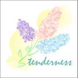 Τυποποιημένο watercolor λουλουδιών άνοιξη ιώδες απεικόνιση αποθεμάτων