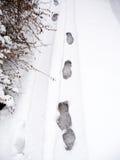 Τυπωμένες ύλες ποδιών χιονιού Στοκ εικόνες με δικαίωμα ελεύθερης χρήσης