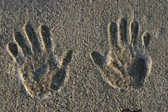 τυπωμένες ύλες χεριών τσιμέντου Στοκ Φωτογραφίες
