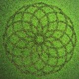 Τυπωμένη ύλη κύκλων στο χορτοτάπητα διανυσματική απεικόνιση