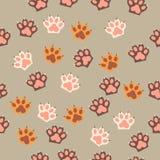 Τυπωμένη ύλη ποδιών γατών με τα νύχια Στοκ εικόνες με δικαίωμα ελεύθερης χρήσης