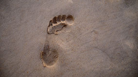 Τυπωμένη ύλη ποδιών στην παραλία Στοκ Φωτογραφία