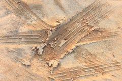 Τυπωμένη ύλη ροδών σε λασπώδη στοκ εικόνες