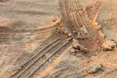 Τυπωμένη ύλη ροδών στο musddy πάρκο στοκ εικόνες με δικαίωμα ελεύθερης χρήσης